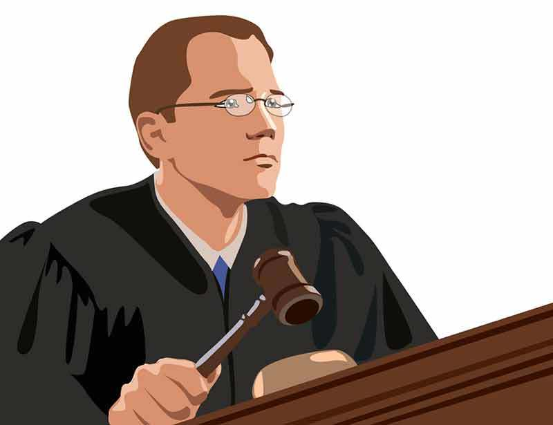 Судья - профессионал